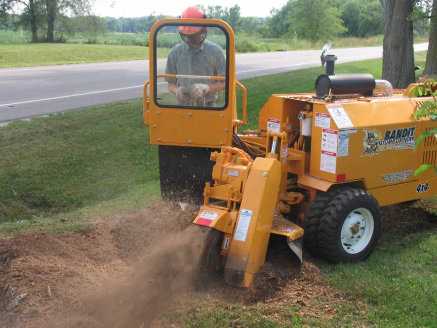 Stump Grinding and Tree Services